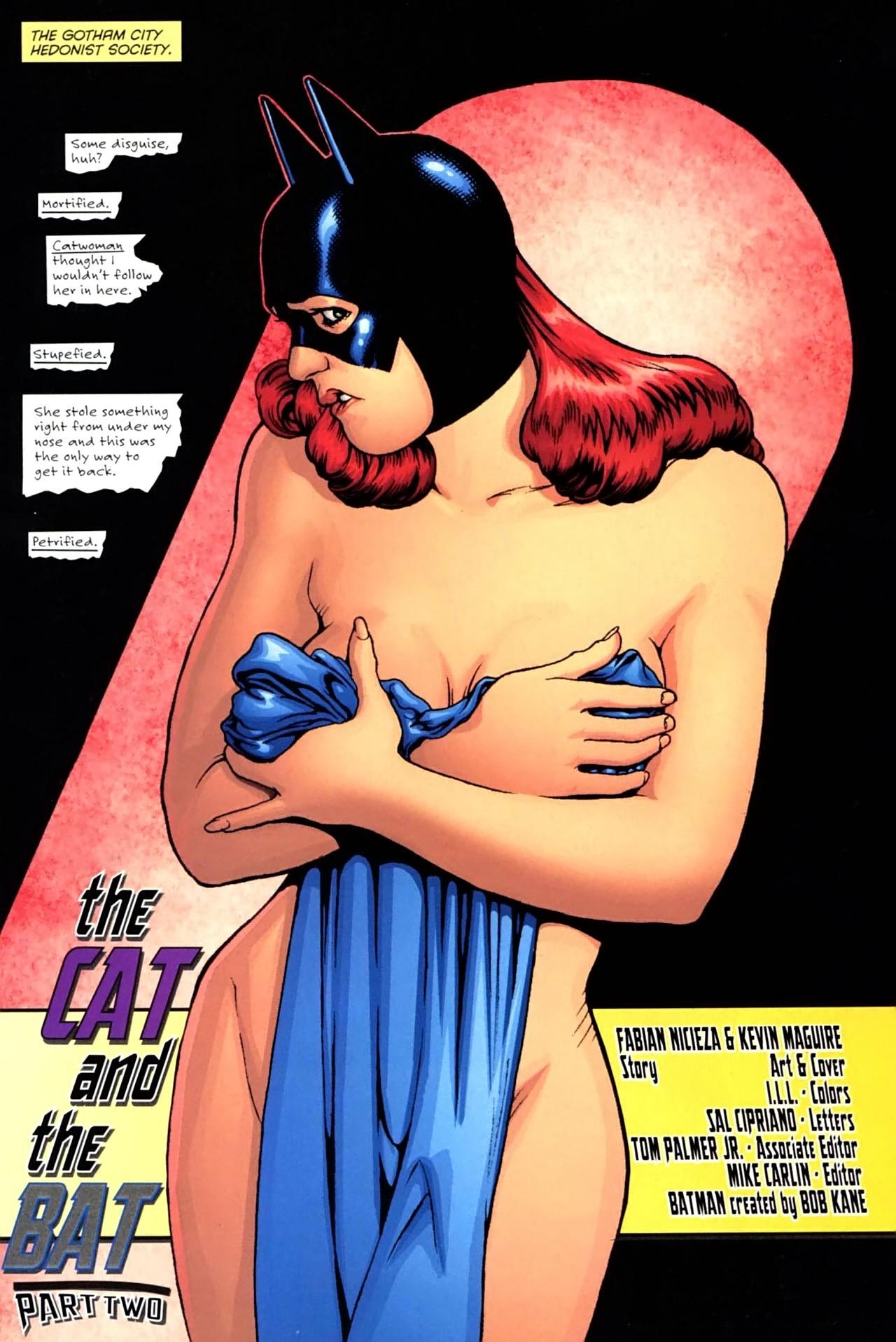 Image - Batgirl Barbara Gordon 0024.jpg   DC Database ...