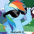 Dashie the RD