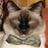 ShiftNeru's avatar