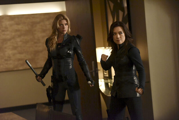 Agents-of-SHIELD-Bobbi-Morse-Melinda-May