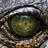 Аватар Ночной охотник
