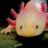 Cresh.'s avatar