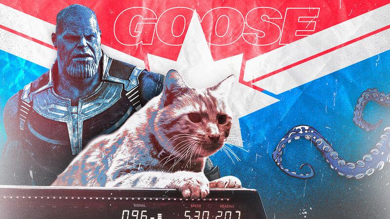 1de83ef0e686d Captain Marvel's Cat Could Take Down Thanos | FANDOM