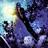 CSH(comicchat)'s avatar