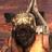 MenacePotatoe's avatar