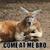 KangarooMate