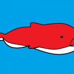 Whale1668