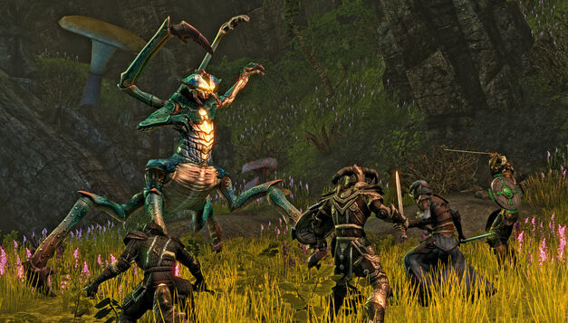 The-Elder-Scrolls-online-bug