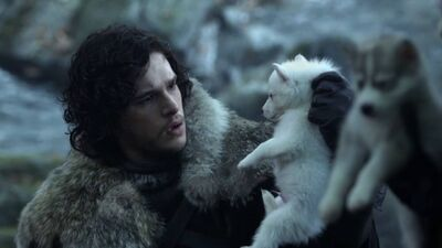 5 Anime Wolves That Put 'Game of Thrones' Direwolves to Shame