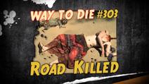 Road Killed