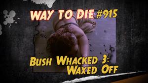 Bush Whacked 3
