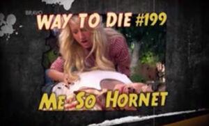 Me So Hornet