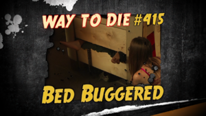 Bed Buggered