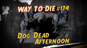 Dog Dead Afternoon