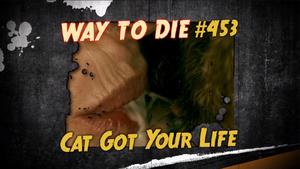 Cat Got Your Life