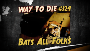 Bats All Folks