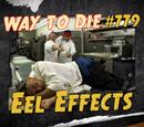 Eel Effects