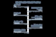 101 Dalmatian Street timeline