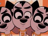 Dimitri Trio