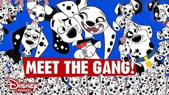 101 Dalmatian Street Meet the Gang! 👋 Disney Channel UK