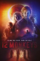 12 MONKEYS CLIMB THE STEPS, RING THE BELL - Poster