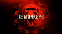 12 Monkeys Title Card