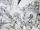 Shinchosha edition artwork Shadow 5.png