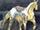 Horse youma.png