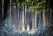 Gang lost in woods