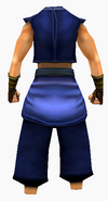 Guanyin-silk robe-male-back