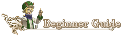 Beginner guide