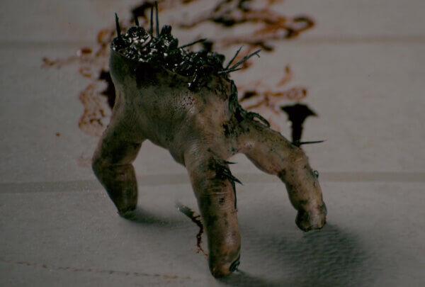 Splinter 02