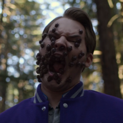 Bugs coming out of the hallucination's mouth