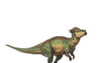 Dinoboy5387