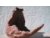 Kidoma's avatar