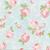 Cherri~blossoms