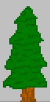 TreeStage3