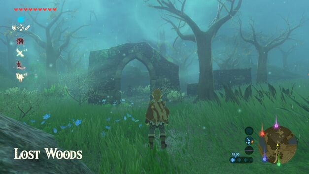 Breath of the Wild Lost Woods
