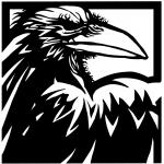 Raven mf 666