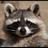 Shenachie's avatar