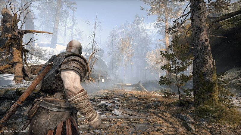 Kratos looks at a ruined forest