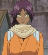 Yoruichi Shihoin in Bleach The DiamondDust Rebellion