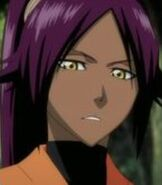 Yoruichi Shihoin (TV Series)