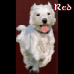 Redpuppy47's avatar