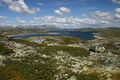 Hardangerviddaflora.jpg