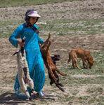 Kurdish nomad girl with lambs