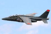 Alpha Jet - RIAT 2007 (2544737153)