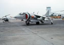 DN-ST-87-06219