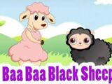Baa, Baa, Black sheep variations