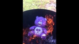 Care-bear on fire